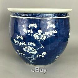 A large Chinese blue & white prunus Jardiniere plant pot fish bowl