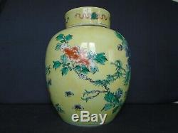An antique large Chinese porcelain F/V Jar & cover, Kangxi dlb'blue circle mark
