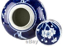C1700 Chinese Kangxi Large Prunus Style Ginger Jar
