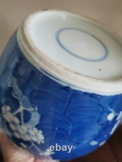 Large Chinese Blue And White Prunus Ginger Jar. With Original Lid. Qing 20cm