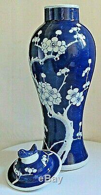Vintage Chinese Blue & White Prunus Large Ginger Jar Double Blue Circle Mark