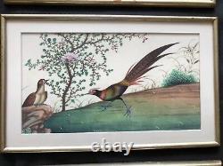 6 Grandes Peintures Aquarelles Chinoises Anciennes Sur Papier Peint, Dynastie Qing 19c