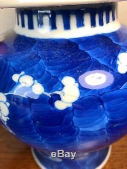 Grand 19ème Siècle Chinois Prunus Temple Jar 26cm Lidded Vase En Porcelaine