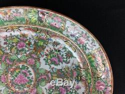 Grand Antique Chinois Médaillon Rose 16 3/4 Pouces Ovale Platter Oiseaux Papillons