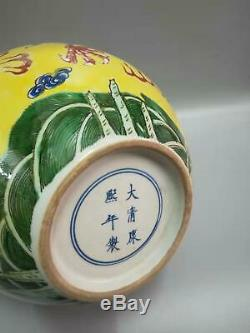 Grande Famille Chinoise Dragons Rose Porcelaine Vases Main Peinture Marques Kangxi