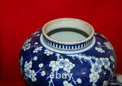 Porcelaine Chinoise Antique Grand Prunus Blossom Couvert Jar Qing Dynasty