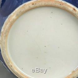 Un Grand Prunus Bleu Et Blanc Chinois Bol Poisson Pot Jardinière