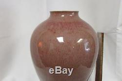 Un Grand Vase Framboise Glacé À La Framboise Chinoise Du Xixe Siècle Du Xixe Siècle 16