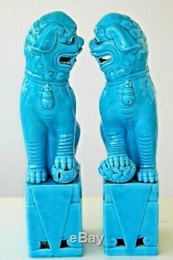 Vintage Turquoise Chinois Très Grande Paire De Temple Foo Lion Chiens 30cm 12ins